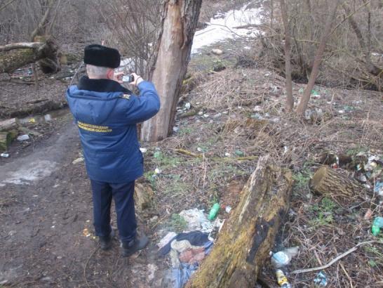В Зарайске устранено около 200 нарушений чистоты и порядка