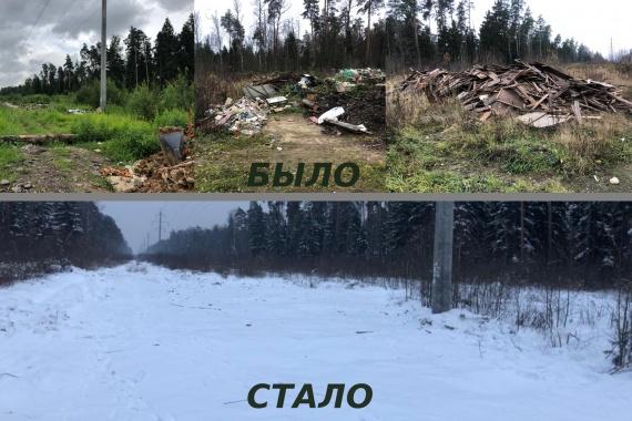 400 кубометров мусора вывезли из леса под Воскресенском